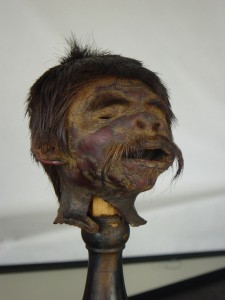 cabeza reducida de los indios Jíbaros de Ecuador
